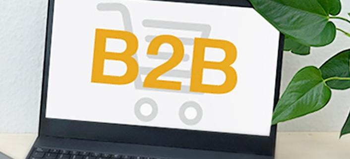 B2B Onlineshop